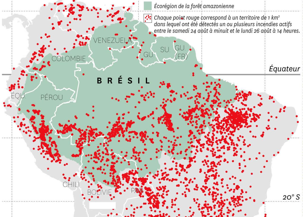 La forêt amazonienne abrite un quart des espèces mondiales