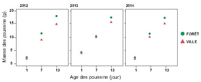 Figure 3 : Croissance des poussins de mésanges charbonnière en milieu urbain et forestier durant 3 années consécutives. Valeurs moyennes ± intervalle de confiance à 95 %. D'après Bailly et al 2016.
