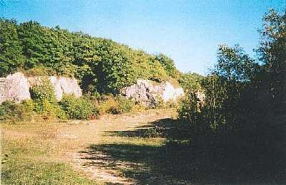 On y trouvera une station d'orchis pyramidal et bien d'autres plantes des mileux calcaires ... Au XVIIème siècle, les habitants de Pointre avaient le droit de tirer de la pierre au Mont-Guérin, sur le territoire de Montmirey-la-Ville, pour leur usage personnel pour être employé dans leur village et non ailleurs.